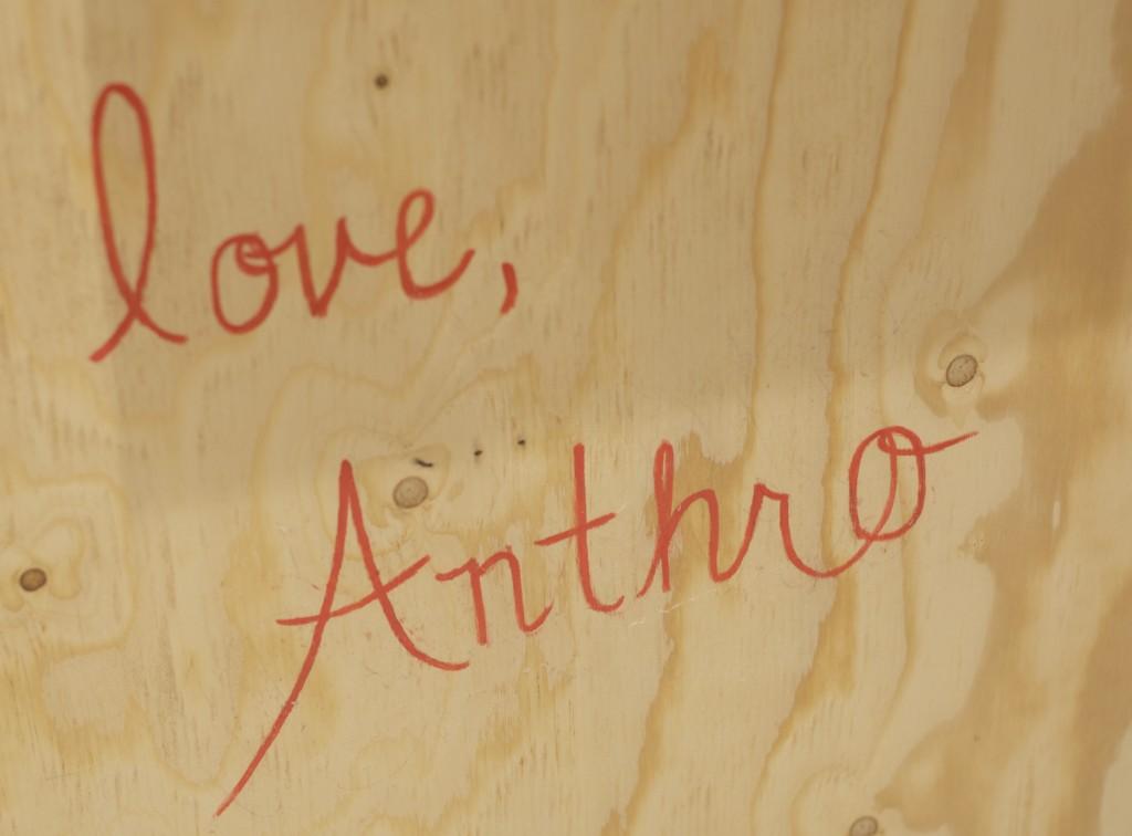 anth33