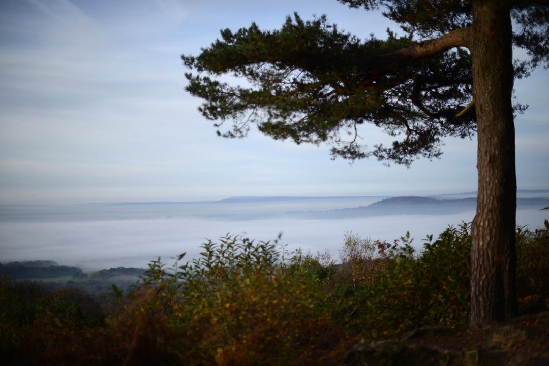 winterfold surrey hills