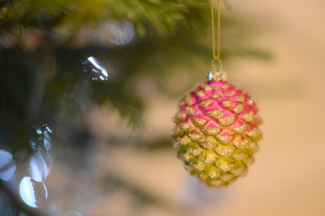 designers guild pine cone