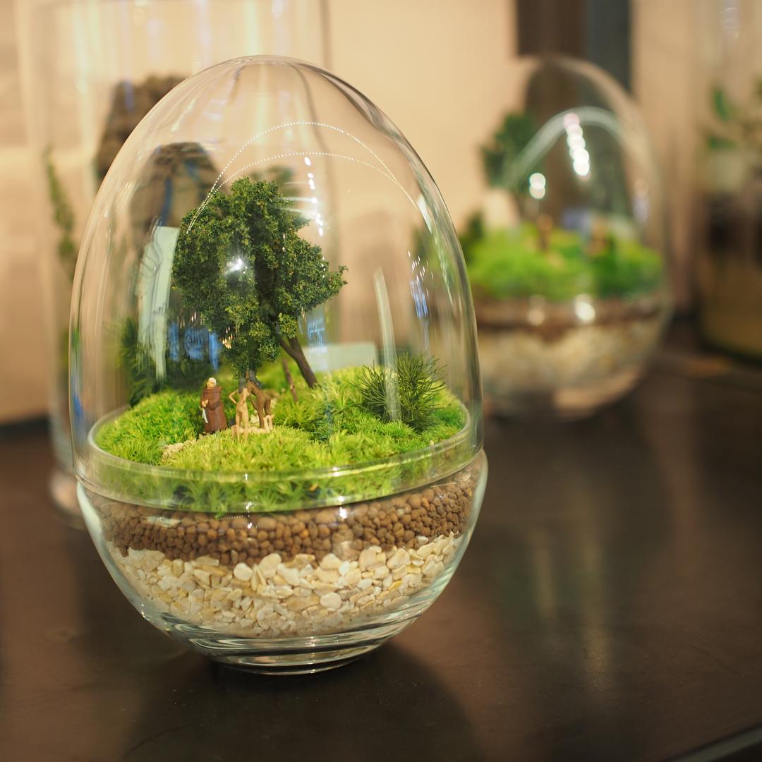 terrarium-trends-notesfromastylist