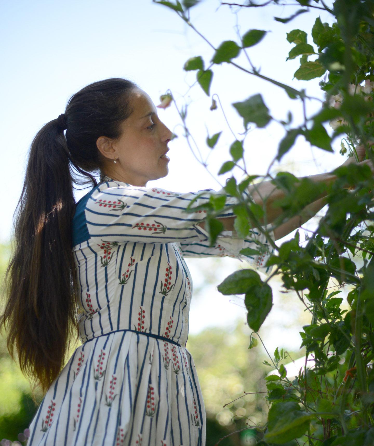 5-january-gardening-tips-notesfromastylist